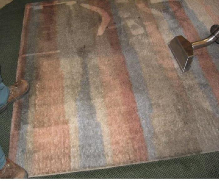 Area Rug Cleaning Before